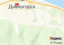Площадка гимназии,  ул. Бочкина 22